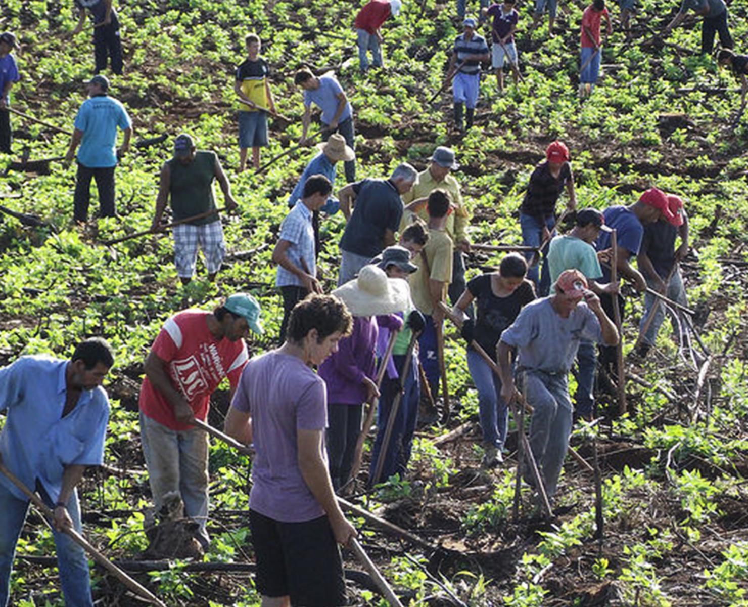 BRASIL: GOVERNO SUSPENDE REFORMA AGRÁRIA