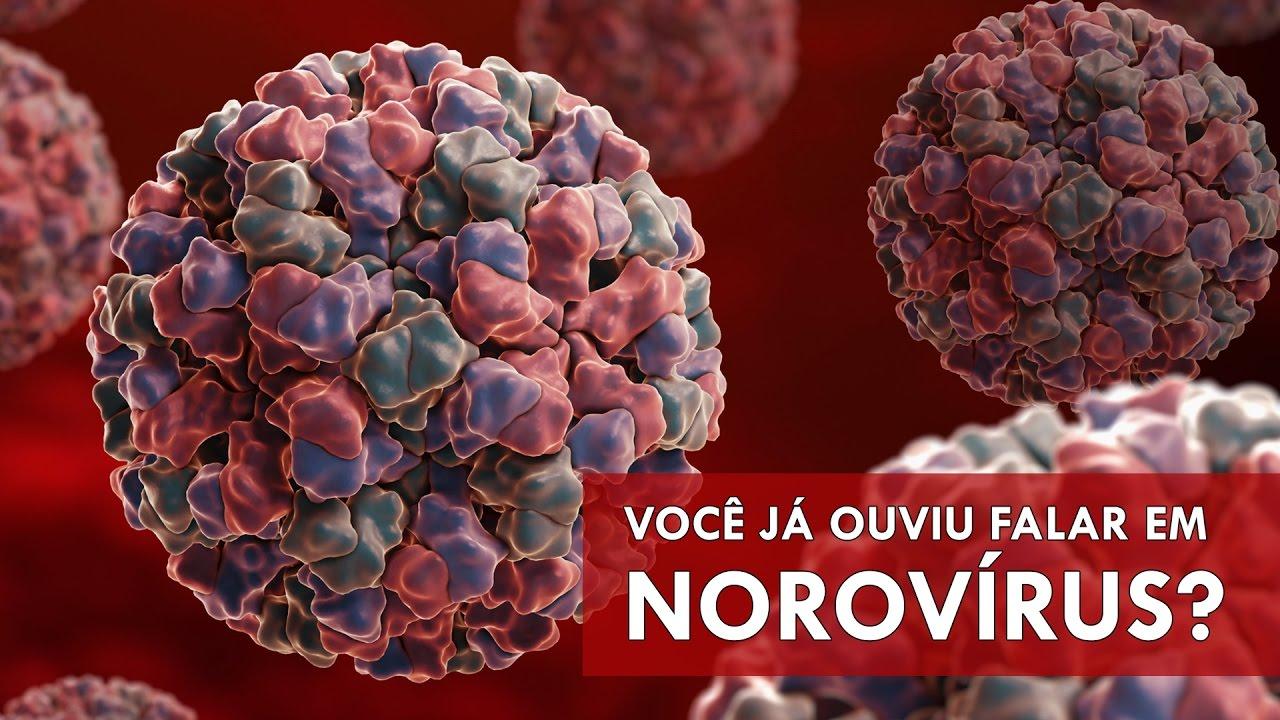 NOROVÍRUS: DOENÇA INFECCIOSA QUE ESTÁ EM MAIS DE 25 CIDADES DO RIO GRANDE DO SUL